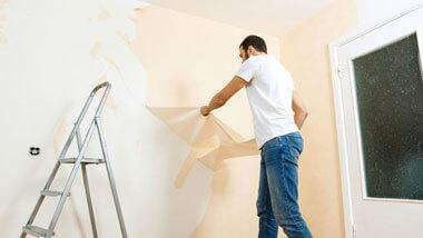 Wallpaper Removal & Installation